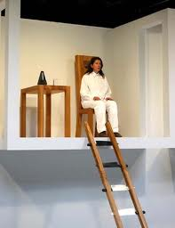 Abramovic lived on three connected platforms in full view of audience for 12 days.